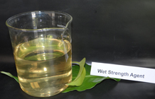 Wet Strength Agent